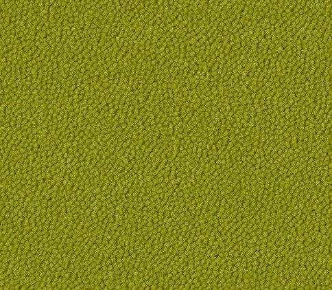westbond-colour-citrus-334
